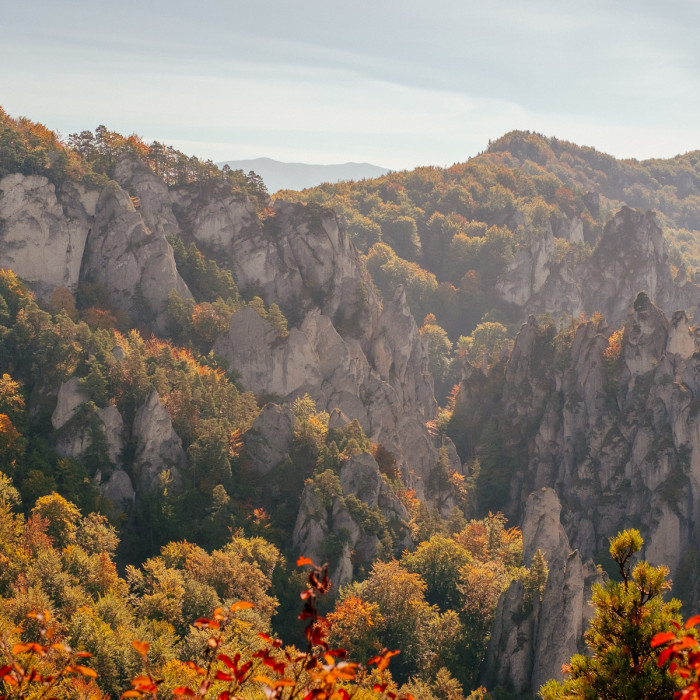 Late autumn in Velká Fatra National Park - Slovakia